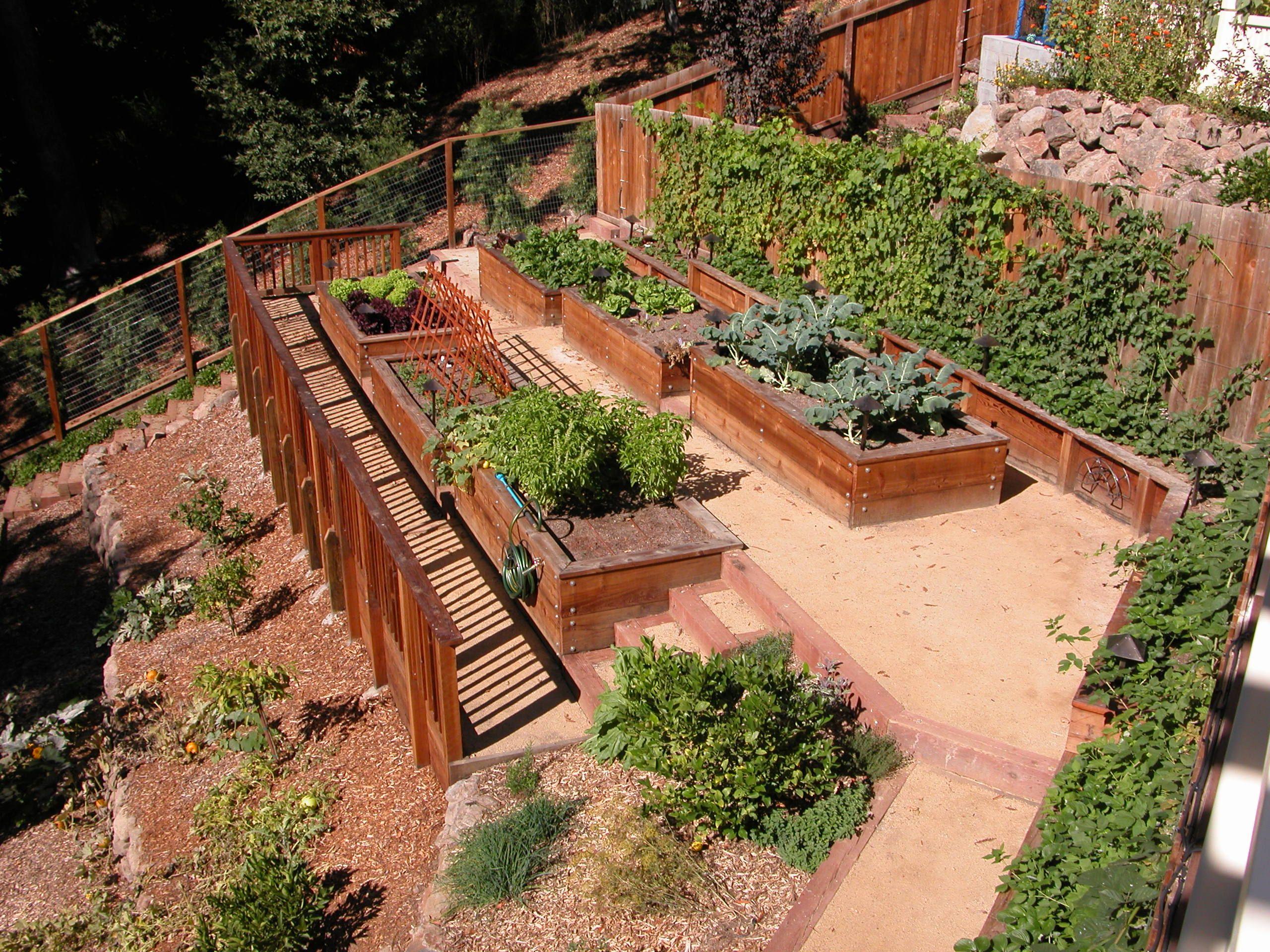 carson kitchen garden 2 hillside garden pinterest on kitchen garden id=67736