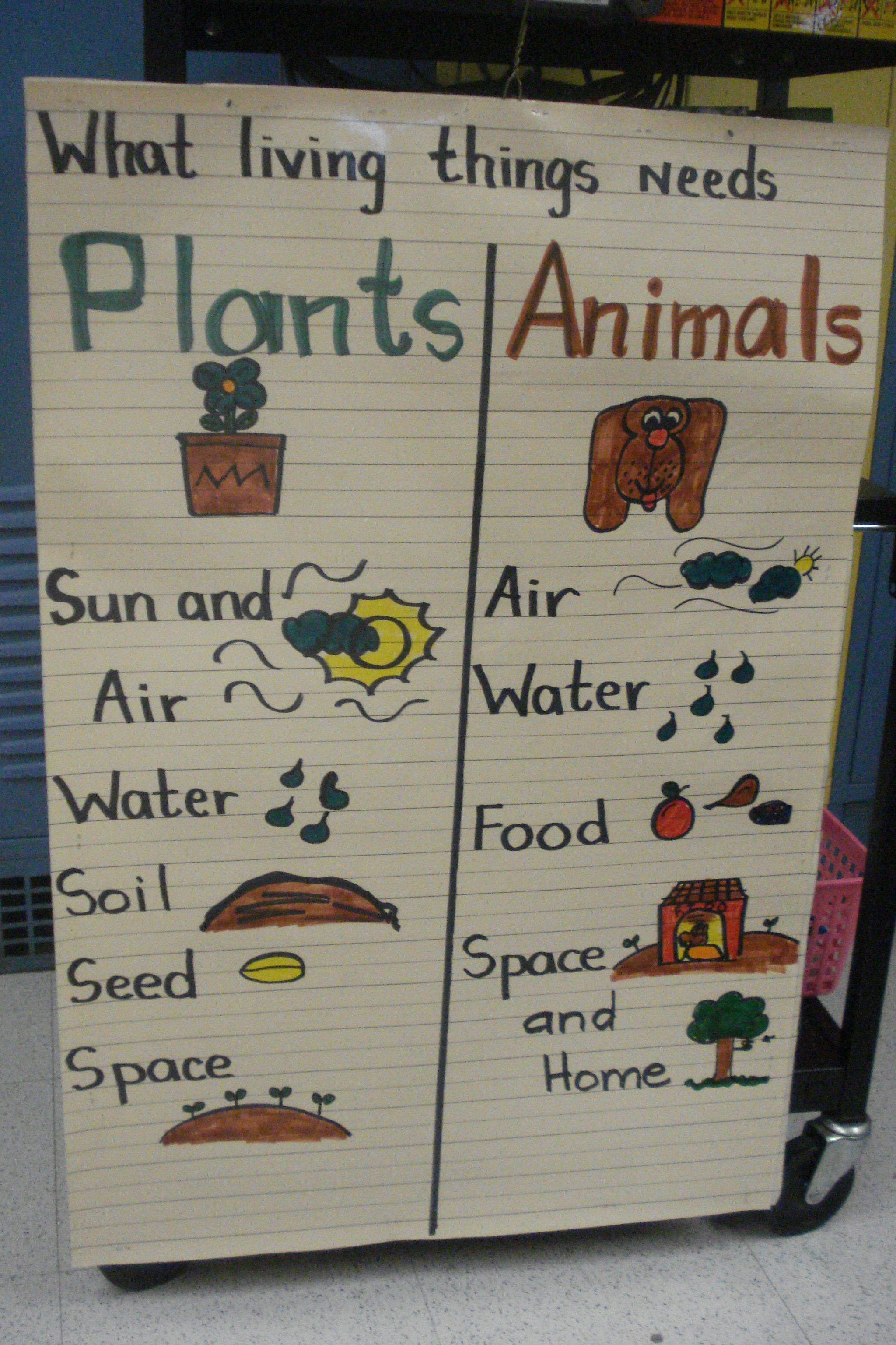 Plants And Animals Needs Anchor Chart