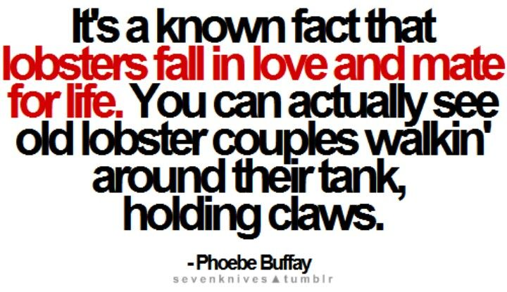 Friends Lobster Quote