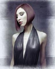 NAHA 2013 Finalist, Salon Team of the Year: Van Michael Salons Photographer: Babak