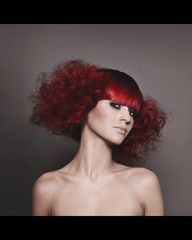 NAHA 2013 Finalist: Hairstylist of the Year James Abu-Ulba Photographer: Coby Photography