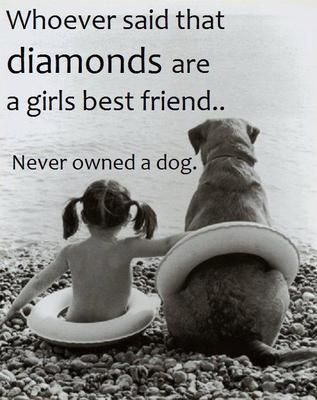 Dogs are girl's best friend