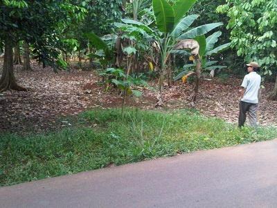 bagian depan tanah, jual tanah di jepara