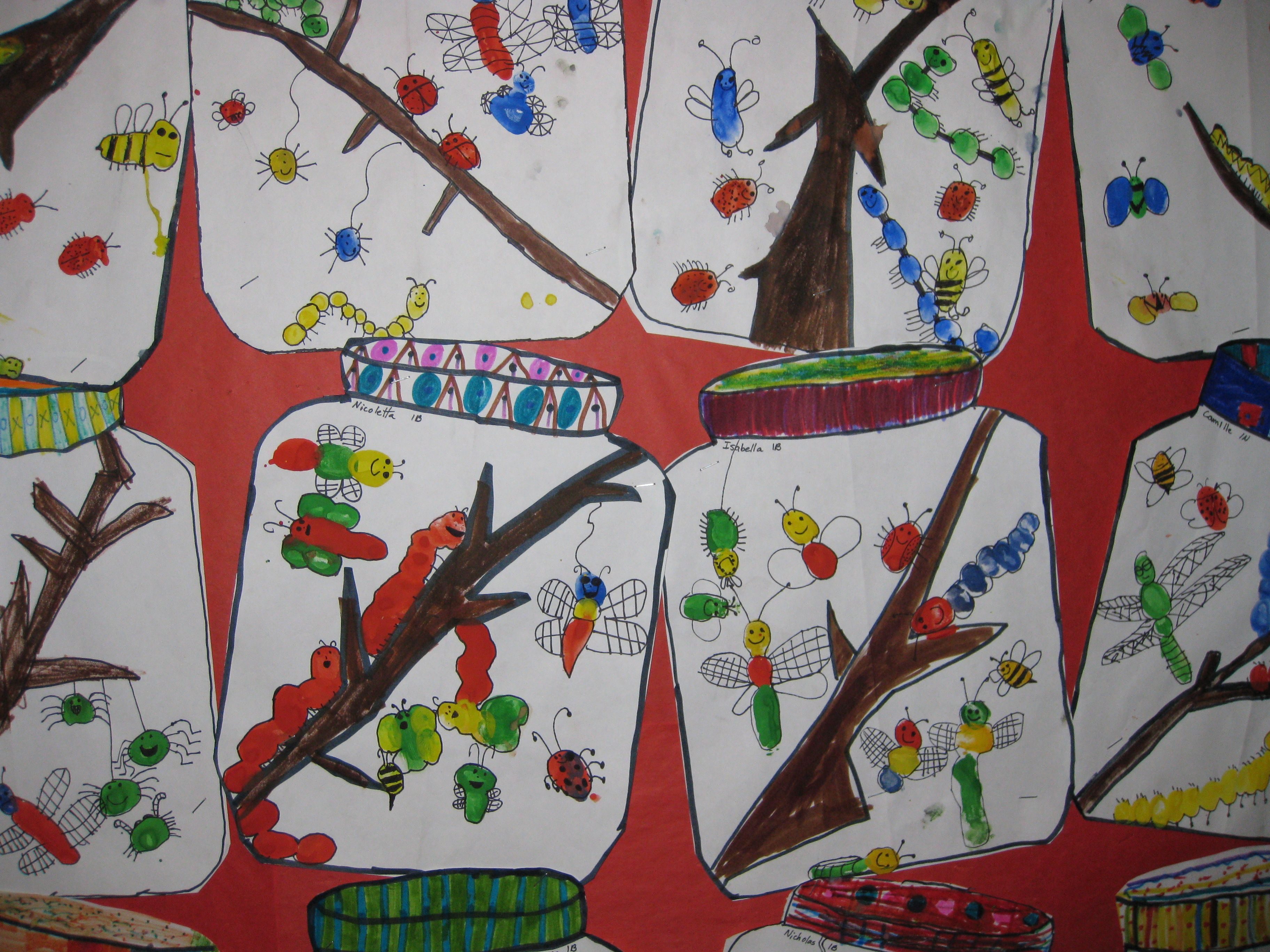 Bulletin Boards Insects And The Bulletin