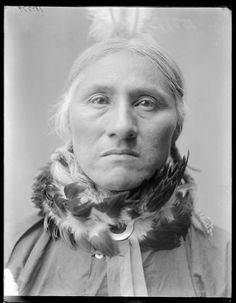 tsitsistas and so taeo o cheyenne people on pinterest coyotes edward curtis and wolves