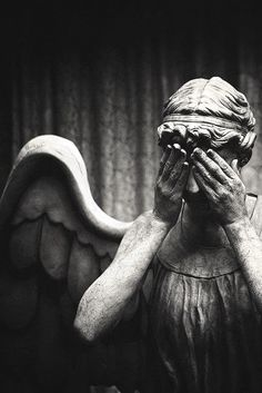 Don't Blink. Blink and your dead. Don't turn your back. Don't look away. And remember, Don't Blink! Good Luck! -The Doctor
