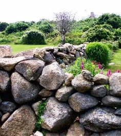 I would love a small, stone fenced backyard for my tiny home. It would be a lovely entertaining/play area.