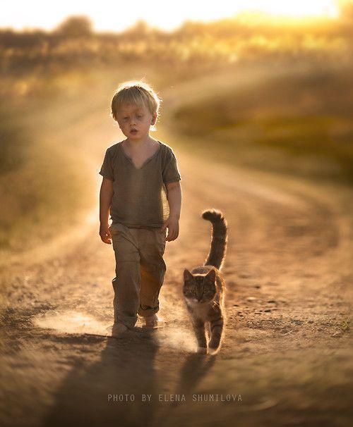 ( dust on the way.. by Elena Shumilova)