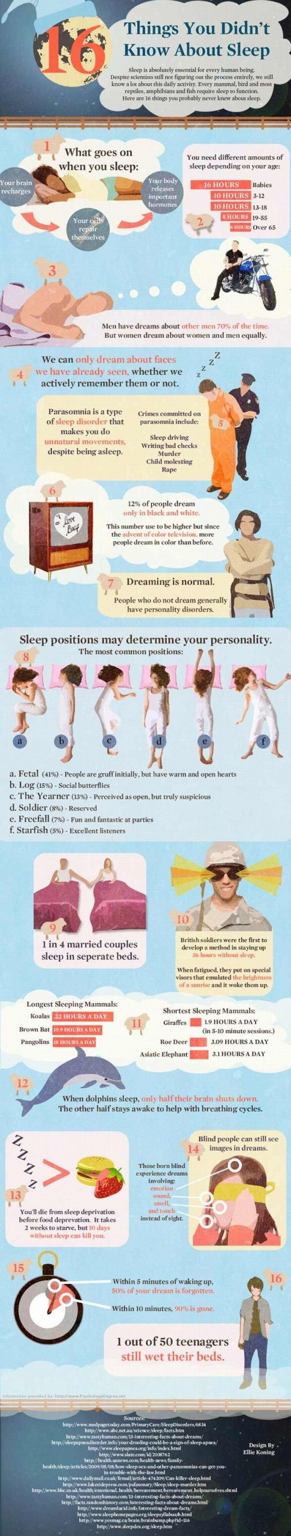 16 Things You Didn't Know About Sleep [Infographic]