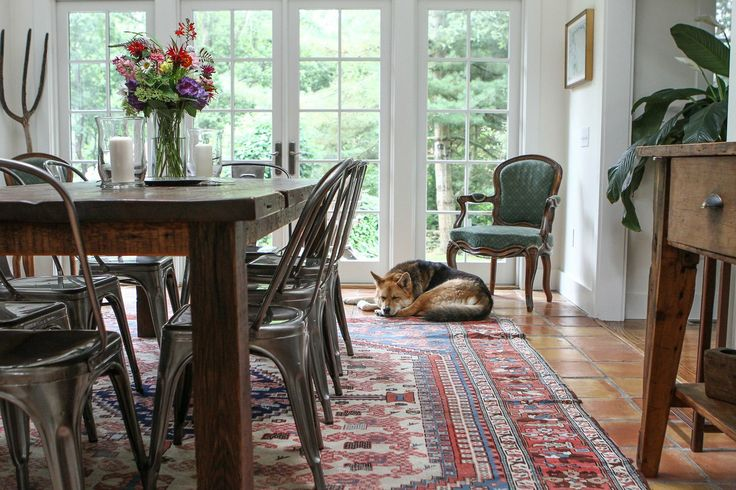 Erik & Maaike's Tranquil Country Cottage. Sleepy pup