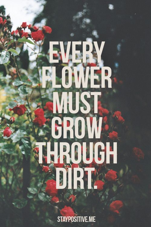 """""""every flower must grow through dirt"""" <3"""