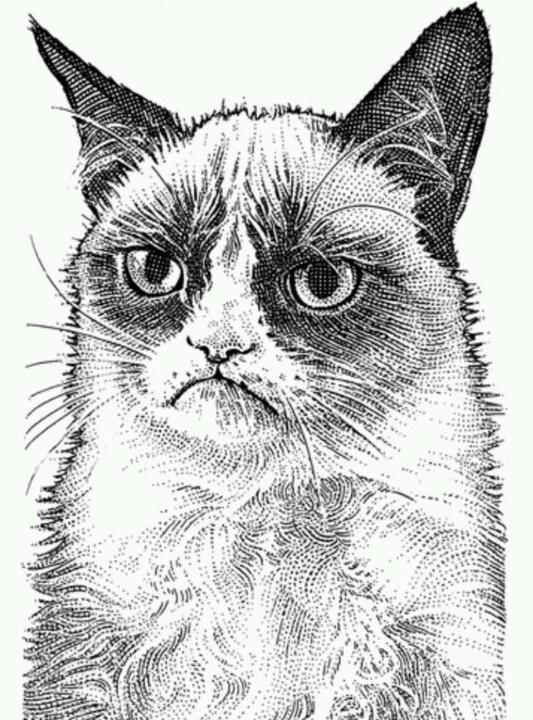 wall street journal portrait grumpy cat pinterest on wall st journal id=75069