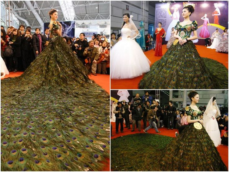 Peacock Feather wedding dress designed by Vera Wang
