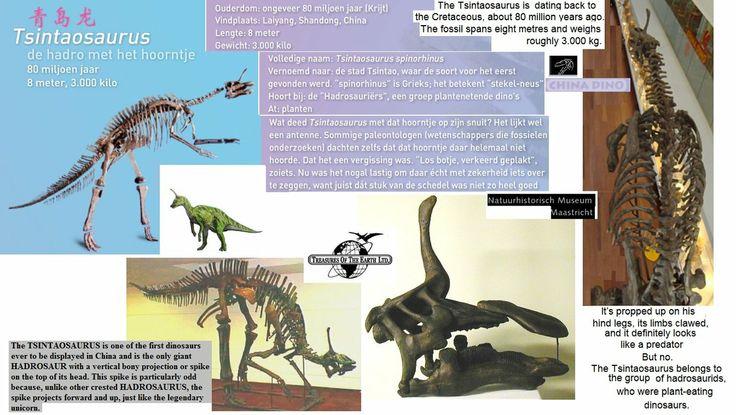 tsjintaosaurus collage