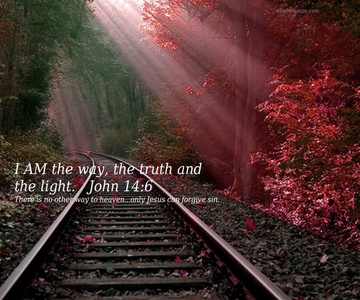 Image result for I am the way