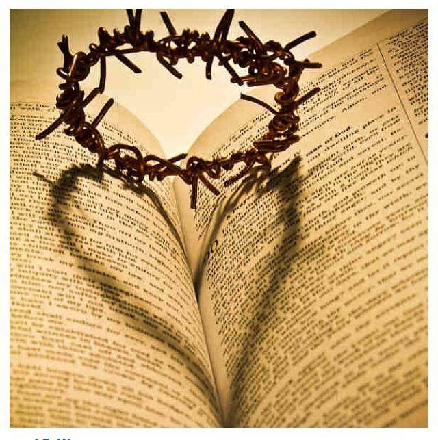 Greater love hath no man than this, that a man lay down his life for his friends. John 15:13 KJV