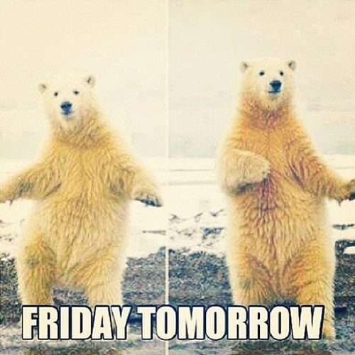 Image result for thursday almost friday
