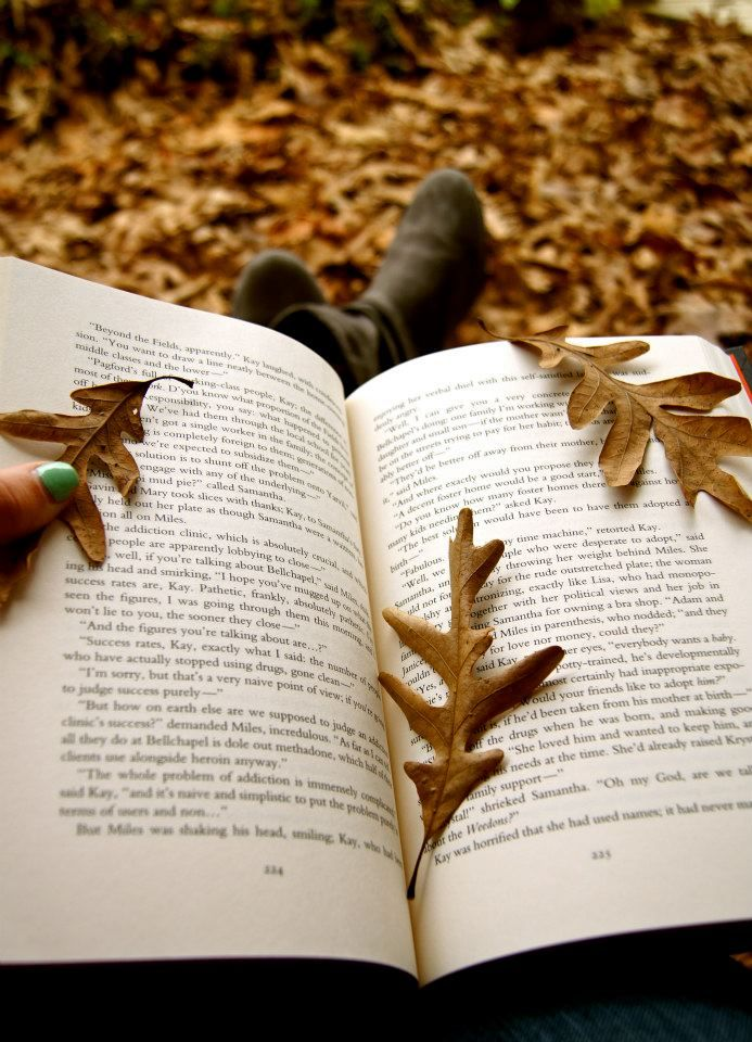 Autumn is a glorious time to be a reader...
