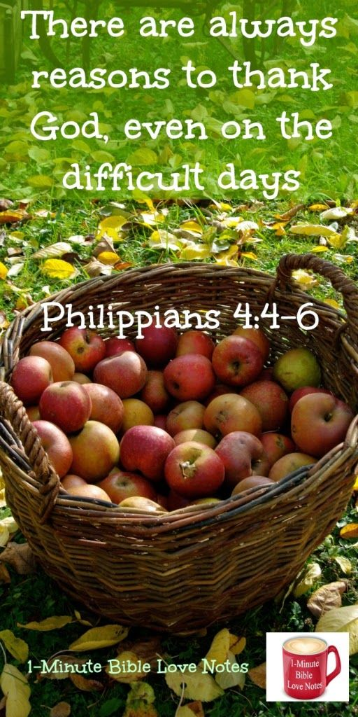 "Sometimes have difficulty being thankful?Try this: Before each prayer request, thank God for something related to the request. ""in every situation, by prayer and petition, with thanksgiving, present your requests to God."" Phil. 4:6 ~ Click image and when it enlarges, click again to read this 1-minute devotion."
