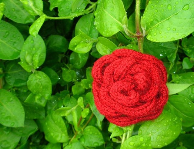 red rose french knitting brooch wool hair clip