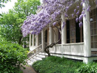 Wisteria drenched porch. L.O.V.E.  Wonder how long it would take to get some wisteria all across our upper balcony?
