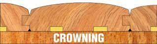 Moisture Problems in Wood Flooring