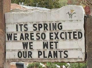 "Unfortunately, we are expecting 5-12"" of snow on Sunday, March 18, 2012, so I won't have to wet my plants."