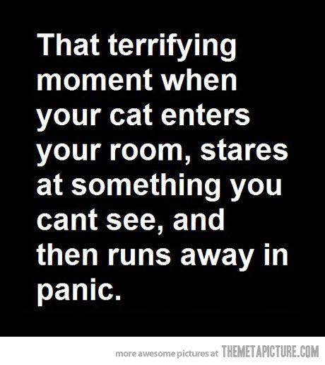 Run! Lol