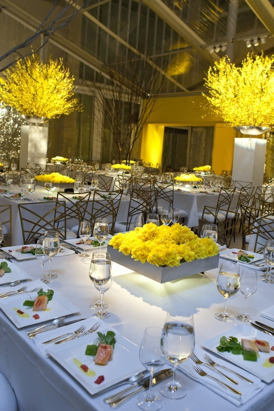 Crazy beautiful forsythia...can put near the altar then move inside