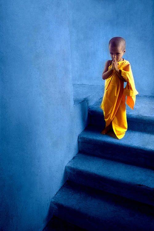 pdi:    Messenger of peace  (by Santosh Rajgarhia)