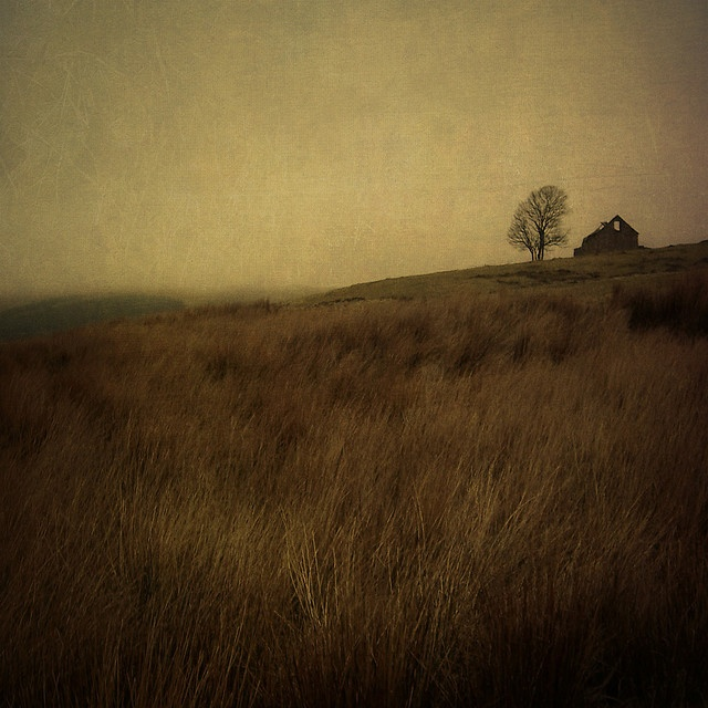 wuthering heights | Flickr - Photo Sharing!