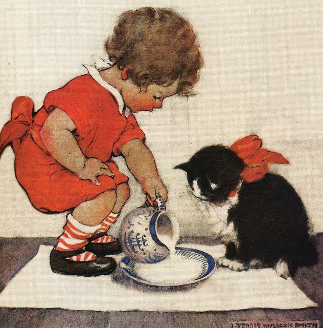 Cute Pet Pictures, Pics: Kittens, Cat, Cats, Piglets, Dogs, Puppies, Pets & Animals, Katze, Katzen, süß, klein, große Liebe, Katzenkind, Katzenkinder, schwarze Katze, schnuckelig, zuckersüß, große Augen