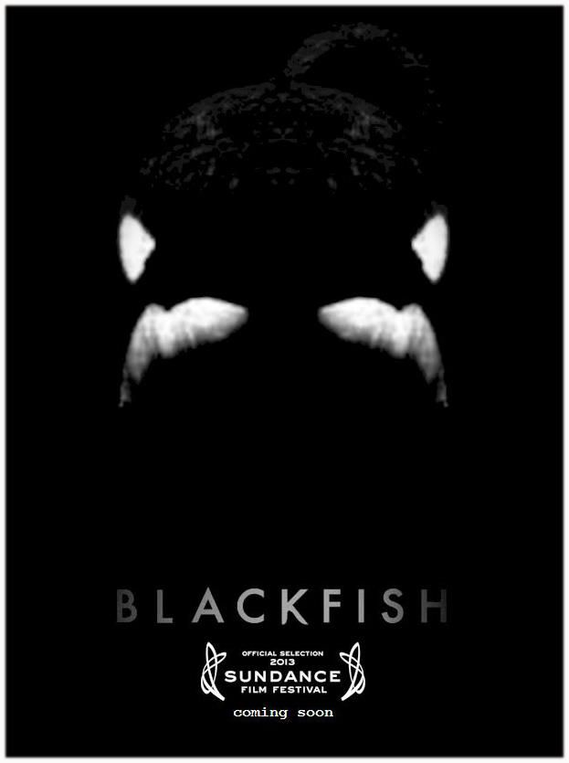 Blackfish - just saw this amazing documentary last night with Matt and his friends in CT. It's so moving, everyone should see it.
