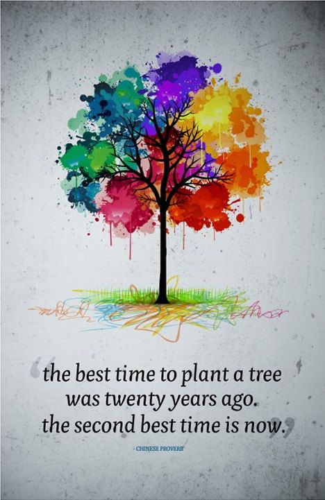 """plant a tree quote 