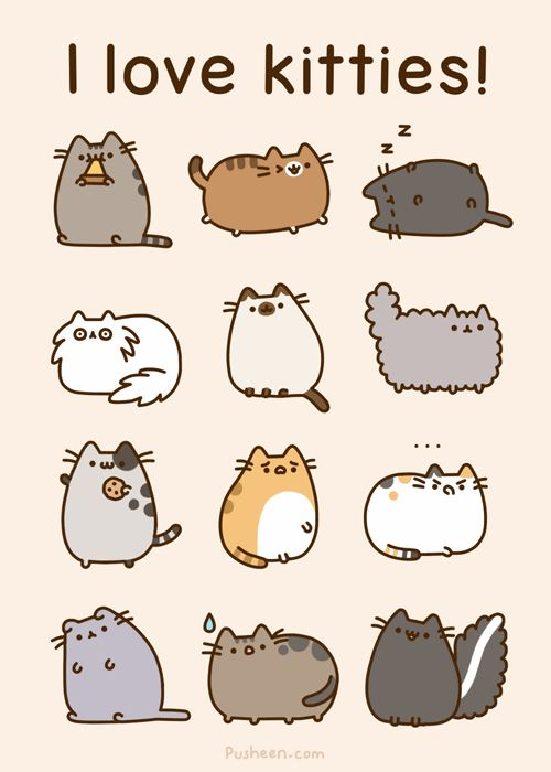 I <3 Pusheen!!! Wait a second that last one seems suspicious.......