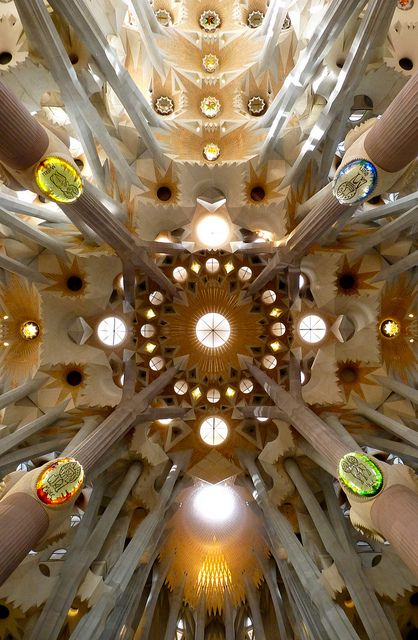 The ceiling of Gaudi's Sagrada Familia, Barcelona (the entire church is it's a must-see down to every intricate detail!)