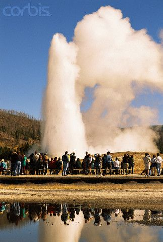 Image result for Old Faithful Geyser Yellowstone