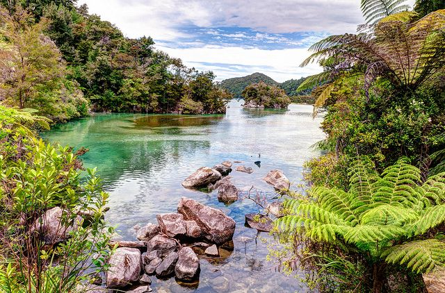 Bark Bay seen on Abel Tasman Coastal Track in Abel Tasman National Park on New Zealand's South Island.