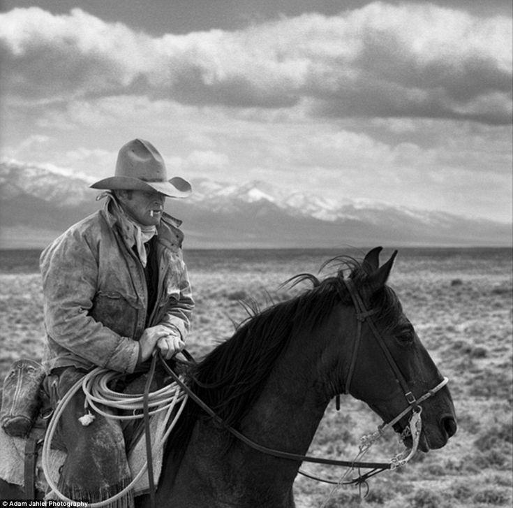 Stunning: Le fotografie mozzafiato catturano ultimi cowboys americani # fotografia # # stile cowboy