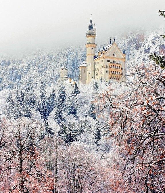 Neuschwanstein Castle. Attraction in Schwangau.  Get insider tips about Neuschwanstein Castle from Trippy.com's Schwangau experts.