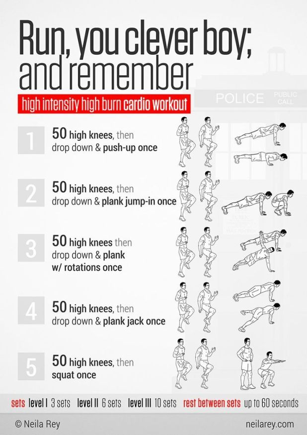 Cardio Workout For Beginners Yourviewsite Co