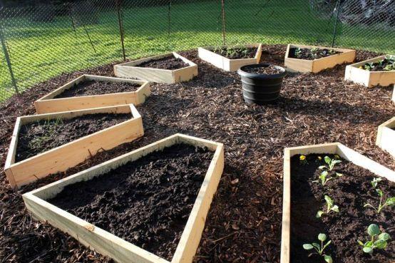 coltivazioni su letti rialzati