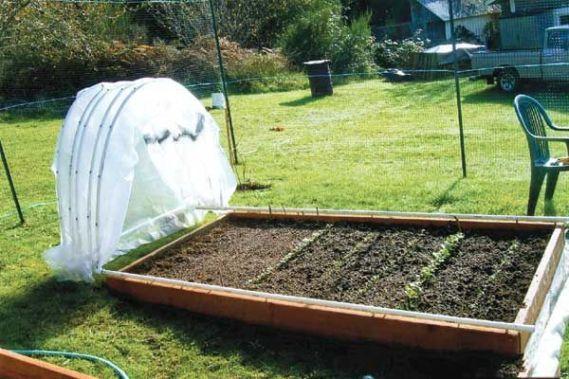 letti rialzati al fine di proteggere le piante dalle temperature più rigide.
