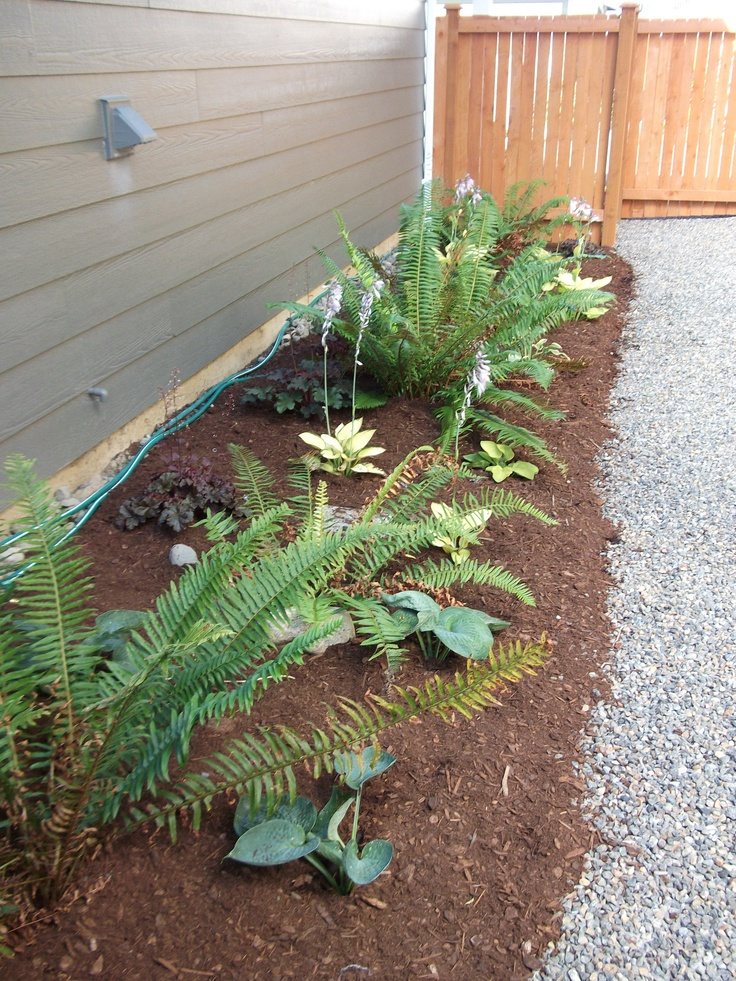 Ideas for a narrow side yard | For the Yard | Pinterest on Narrow Yard Ideas  id=48035