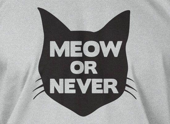 Funny Cat TShirt Kitty TShirt Cats TShirt Meow or by IceCreamTees, $14.99