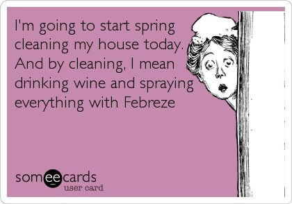 Spring Cleaning Quotes Funny | Image via Some e Cards .
