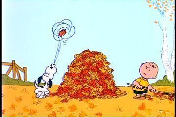 I Love Autumn ~