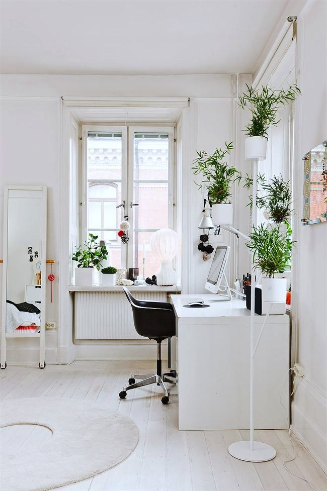 Workspace - so calm with all that greenery in white