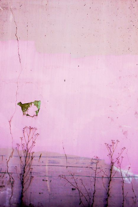 PANTONE Color of the Year 2014 - Radiant Orchid art