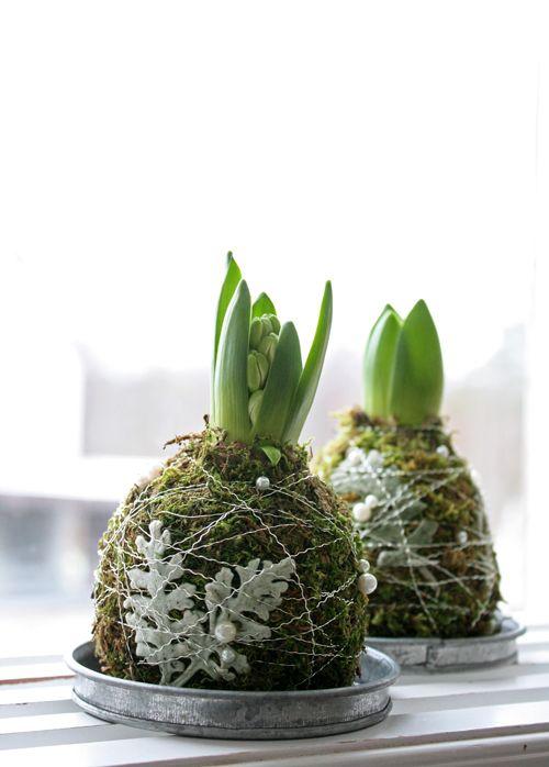 Hyacintenbol bekleden met mos. Versieringen als gekleurde blaadjes en pareltjes tussen draad klemmen en geheel op schoteltje zetten.